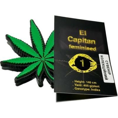 Купить семена El Capitan Fem
