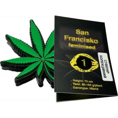 Купить семена San Francisсo Fem