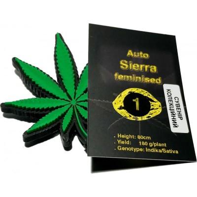 Купить семена Sierra Auto Fem