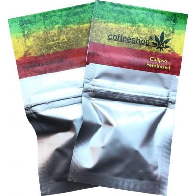Купить семена Calipso Fem
