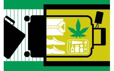 Изменения обращения с марихуаной в аэропортах США