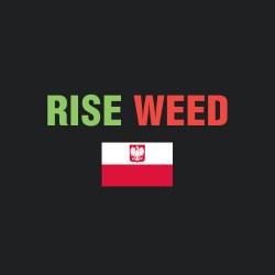 Бридеры Польши