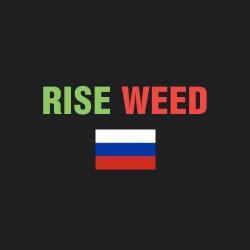 Бридеры России