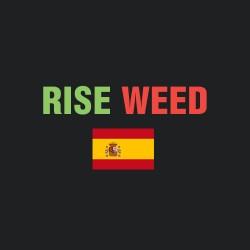 Бридеры Испании