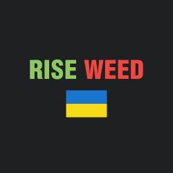 Бридеры Украины